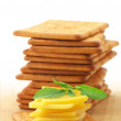 Crackers with cheese and basil — Stock Photo #4901739