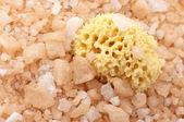 Bath salt and sponge — Stock Photo
