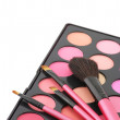 Blushes palette and brushes — Stock Photo #5118801