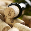 Wine bottle and corks — Stock Photo