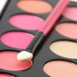 Blushes palette and applicator — Stock Photo