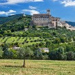 View of Assisi old city, Umbria, Italy — Stok fotoğraf