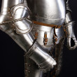 Royalty-Free Stock Photo: Armour