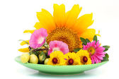 Green plate with August flowers — Stock Photo