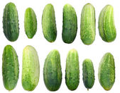 Fresh isolated cucumbers set — Stock Photo