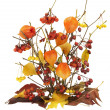 Dead autumn berries, leaves and branches — Stockfoto