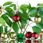 Christmas tree concept — Stock Photo #4907329