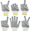 Stock Photo: Working gloves, signs and gesture set