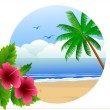 Tropical beach background — Photo