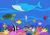 Sea life cartoon — Stock Photo