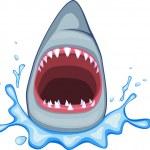 Shark illustration — Stock Vector