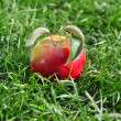 Red apple in a grass — Stock Photo