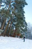Flickan står mittemot skogen på vintern — Stockfoto