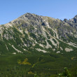 Stock Photo: Peak Tatras