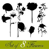 Set of illustrated cute flower's silhouettes — Foto Stock