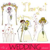 Set di elementi illustrati nozze — Foto Stock
