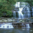 Liffey Falls — Stock Photo #5315047