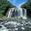 Waterfall in Reunion island — Stock Photo