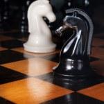 Black and white chess horses — Stock Photo