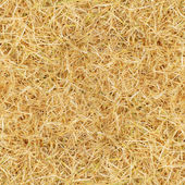 Tile seamless yellow grass texture — Stock Photo