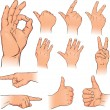 Various poses of human hands - Stok Vektör