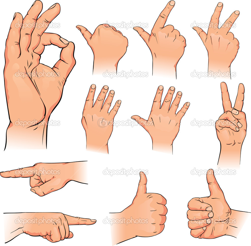 Vector illustration various poses of human hands — Stock Vector #5009217