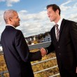 Business handshake over the deal - Foto Stock
