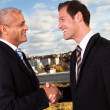 Business handshake over the deal — Foto de stock #4874597