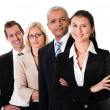 Strong Business Team — Stock Photo #4899061