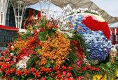 Bloemen versieren chinese kaart — Stockfoto
