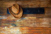 Hat and wood — Stock Photo