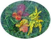 Feuilles, feuilles, fleurs, herbe sous la glace — Photo