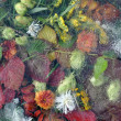 Leaves, leaf, flowers, grass under ice — Stock Photo