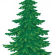 Christmas green tree - Stock Photo