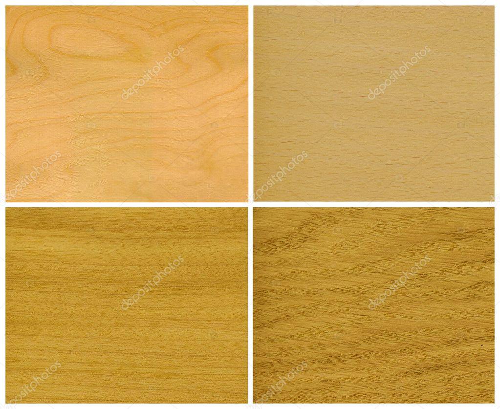 wood veneer ice birch beech elm oak stock photo. Black Bedroom Furniture Sets. Home Design Ideas
