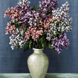 Stock Photo: Lilac in white amphora