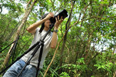 Photographer in forest — Stock Photo