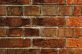 Old bricks wall — Stock Photo