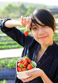 Feliz mulher escolher morango — Foto Stock