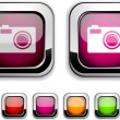 Stock Vector: Photo button.