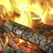 Bonfire — Stock Photo #4009688