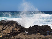 Wave crash and burst into the air at Makapuu — Stock Photo