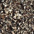 Wet rocks, pebbles, and stones on a beach on Oahu - Stock Photo