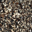 Stock Photo: Wet rocks, pebbles, and stones on beach on Oahu