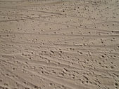 Beach Sand with foot prints and tire tracks — Stock Photo