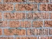 Brick wall cemented together thats has had spray paint removed f — Stock Photo