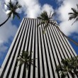 Looking up at modern office building in Honolulu with tall Palm — Stock Photo #5315763