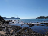 Bay of Zihuatanejo with bird playing in shore and Cruiseship in — Stock Photo