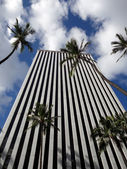 Looking up at modern office building in Honolulu with tall Palm — Stock Photo