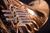 French Horn — Stok fotoğraf